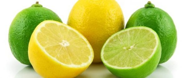 Ripe Sliced Lime and Lemon Isolated on White