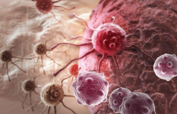 measles-virus-1-600x389